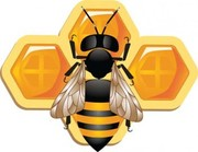 Пчелопакеты без посредников